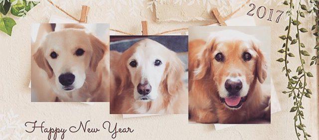 新年のご挨拶とお誕生日でみる2017年のテーマ