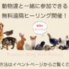 動物達と一緒に♪無料遠隔ヒーリング【さそり座新月】のお知らせ