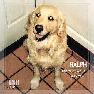 わたしのペットロス〜Ralphへの想い