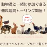 動物達と一緒に♪無料遠隔ヒーリング【双子座新月】のお知らせ