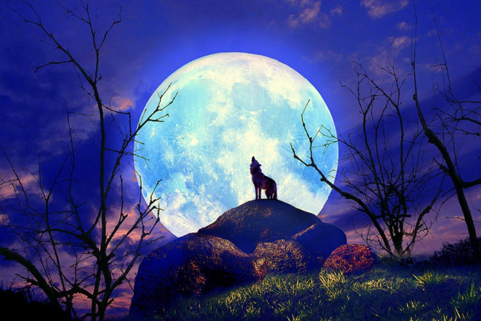 満月の無料ヒーリングのご報告